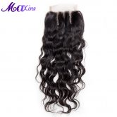 Maxine Hair Company 100% Remy Human Hair Water Wave Lace Closure Three Part Style 130% Density 10-18inch Available Free Shipping